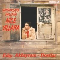 Edip Akbayram - Nice Yıllara Gülüm - Plak